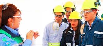 Sistema de gestión de seguridad, salud ocupacional y medio ambiente - SSO-007