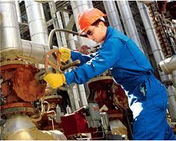 Seguridad Y Salud En La Industria - SSO-008